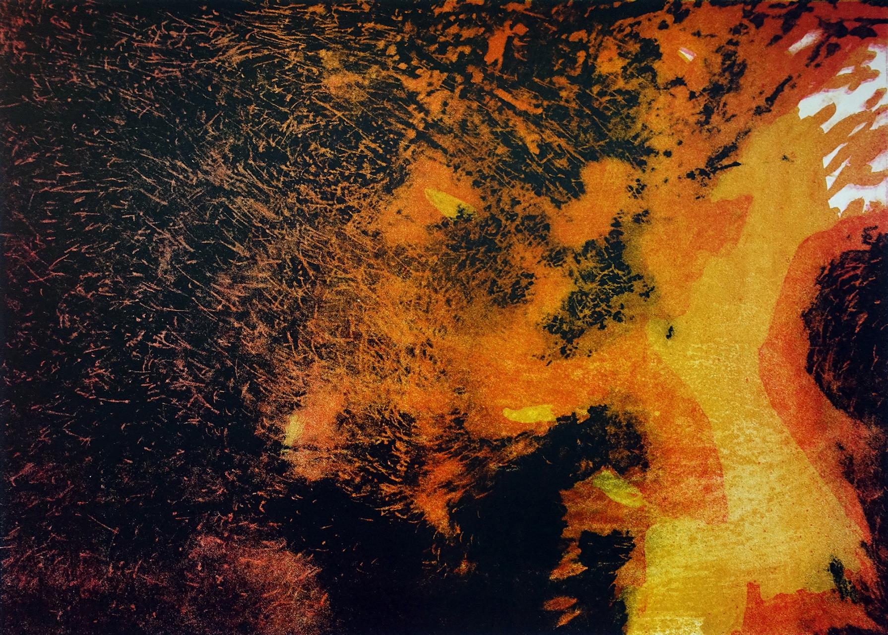 Vuursteen, litho (foto R. De Graef)